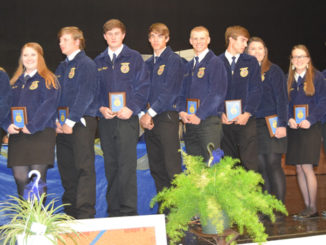 FFA officers for web