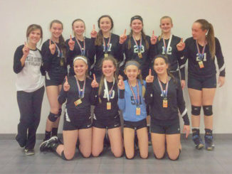 WEB-4-27-16-clay-county-volleyball