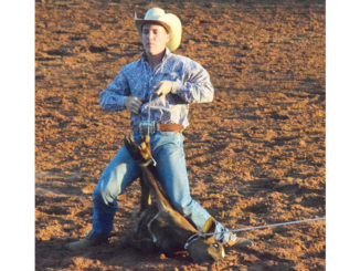 WEB-6-25-16-youth-rodeo-1