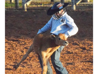 WEB-6-25-16-youth-rodeo-12
