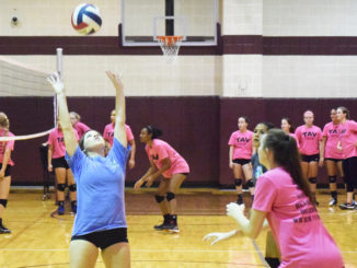 WEB-7-27-16-volleyball-5