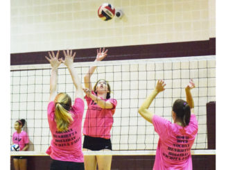 WEB-7-27-16-volleyball-6