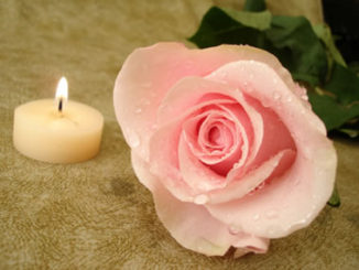 ist2_3193130-pink-rose-with-candle-on-background