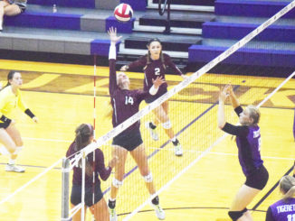 web-9-28-16-bowie-volleyball-6