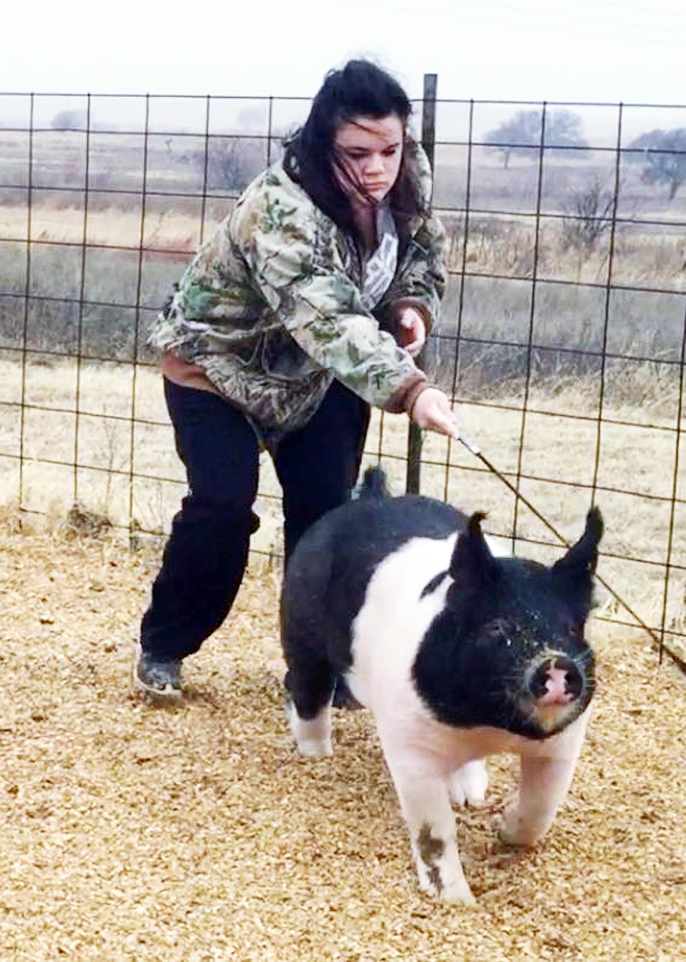 Jessica vogel working with pig